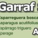 costa-garaff-Asparargus