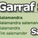 costa-garaff-Salamander