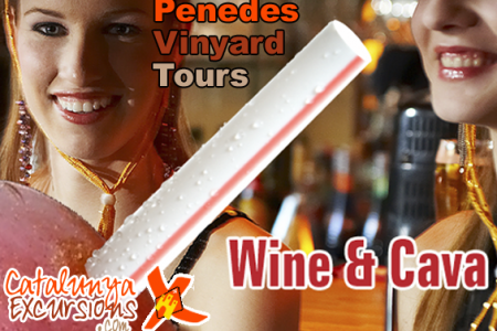 Wine Vinyard Tour Penedes Region