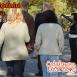 sitges-codorniu-tours