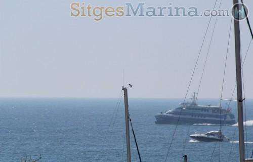 Sitges-Ferry-Port-Marina65