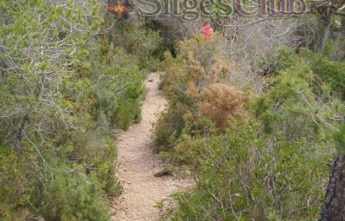 Sitges-club-trek-garraf040