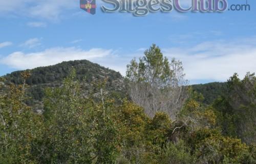 Sitges-club-trek-garraf043